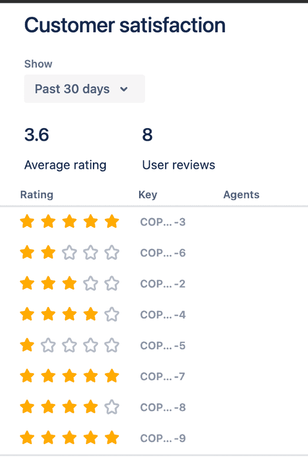 Image of Customer Satisfaction Report